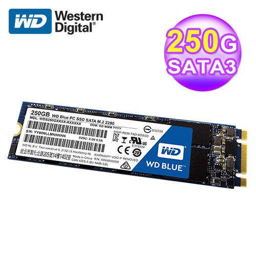 WD 威腾 S250G1B0B 250GB 固态硬盘M.2(蓝标)