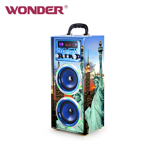 WONDER 旺德 蓝牙KTV音响 WS-T024U 蓝